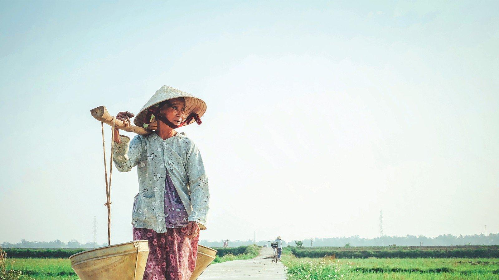 Vieille femme vietnamienne dans la campagne