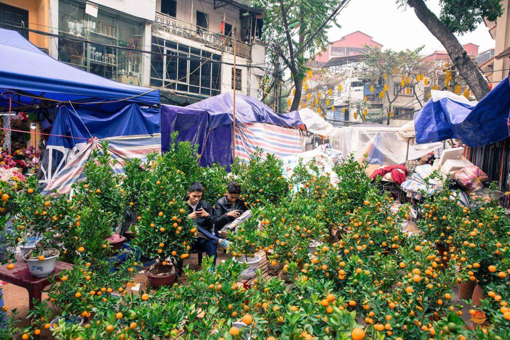 Komkuat en vente dans les rues de Hanoi, Vietnam