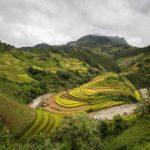 Paysages spectaculaires dans le district de Mu Cang Chai, Vietnam
