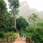 Vegetation luxuriante dans le Parc Nationale de Xuan Son, Vietnam