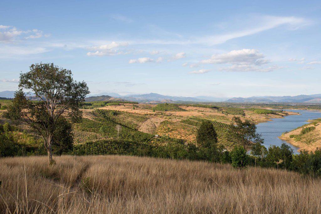 Paysage verdoyant des hauts plateaux du Vietnam