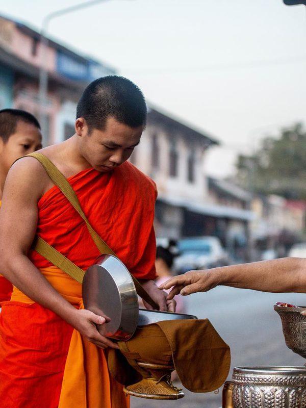 Un moine au petit matin à Luang Prabang au moment de l'offrande