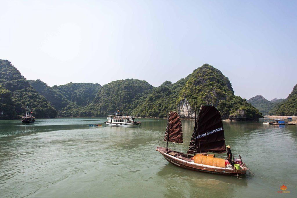 Jonque de pêcheur naviguant dans la Baie de Lan Ha, Vietnam