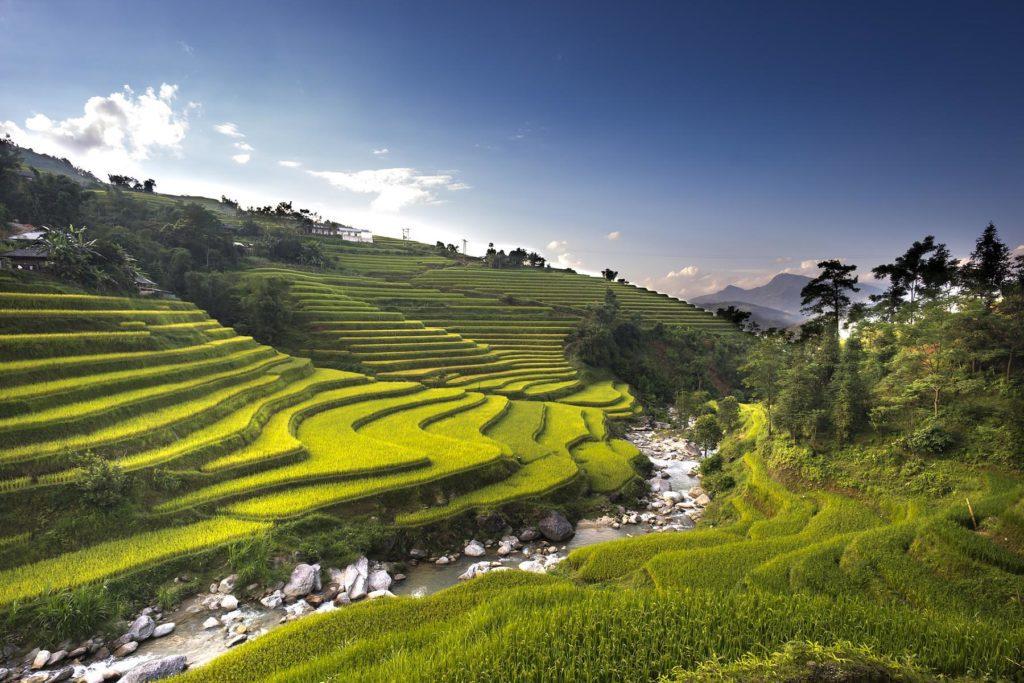 Paysages de Hoang Su Phi, Vietnam