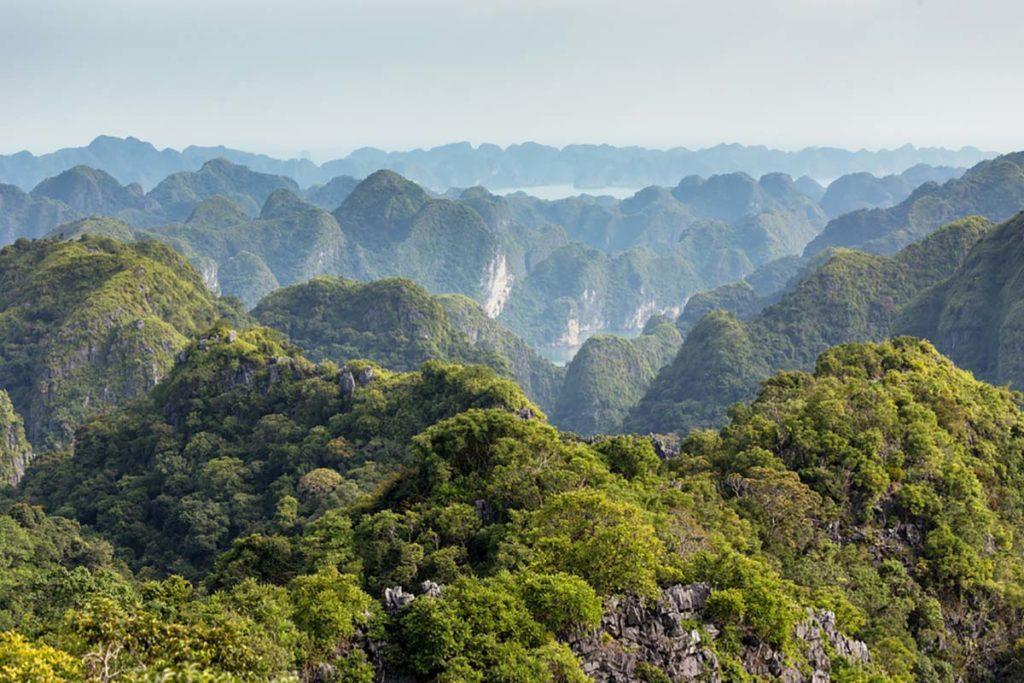 Superbe point de vue sur l'Ile de Cat Ba, Vietnam