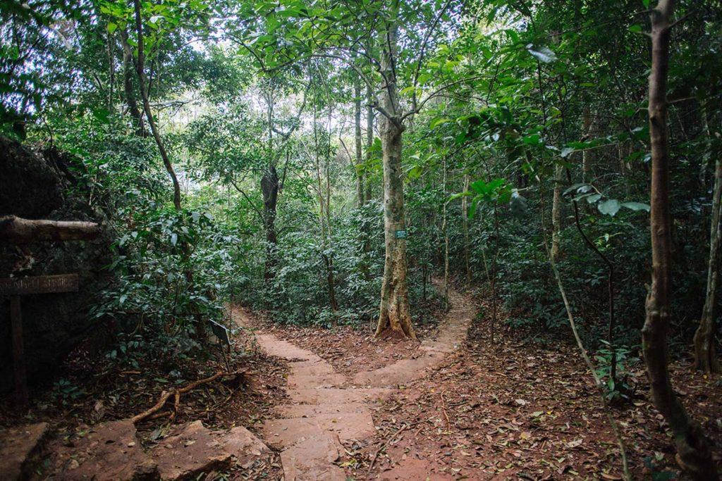 Les sentiers du parc national de Cat Ba, Vietnam