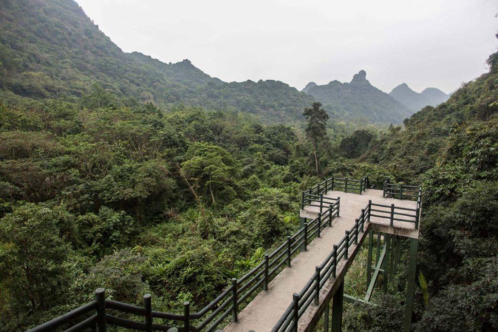 Vue depuis l'entrée de la grotte Trung Trang sur l'Ile de Cat Ba