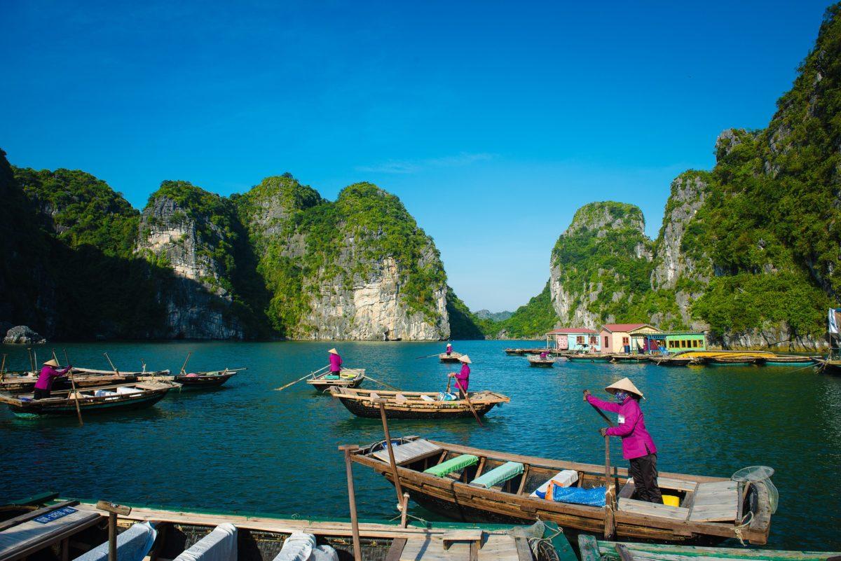 Rameuses dans la baie d'Halong, Vietnam