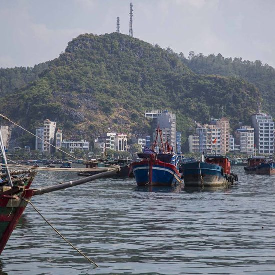 Le port de pêche de Cat Ba