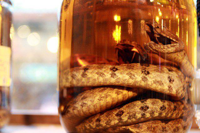 alcool de serpent vietnam