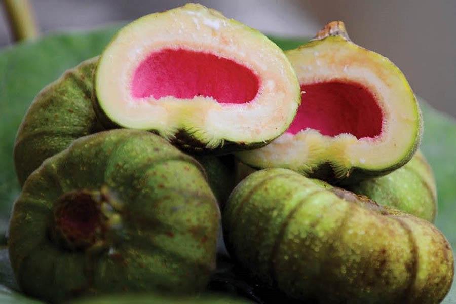Trai Va, fruit spécial de Hue