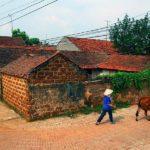 Village de Duong Lam au Vietnam
