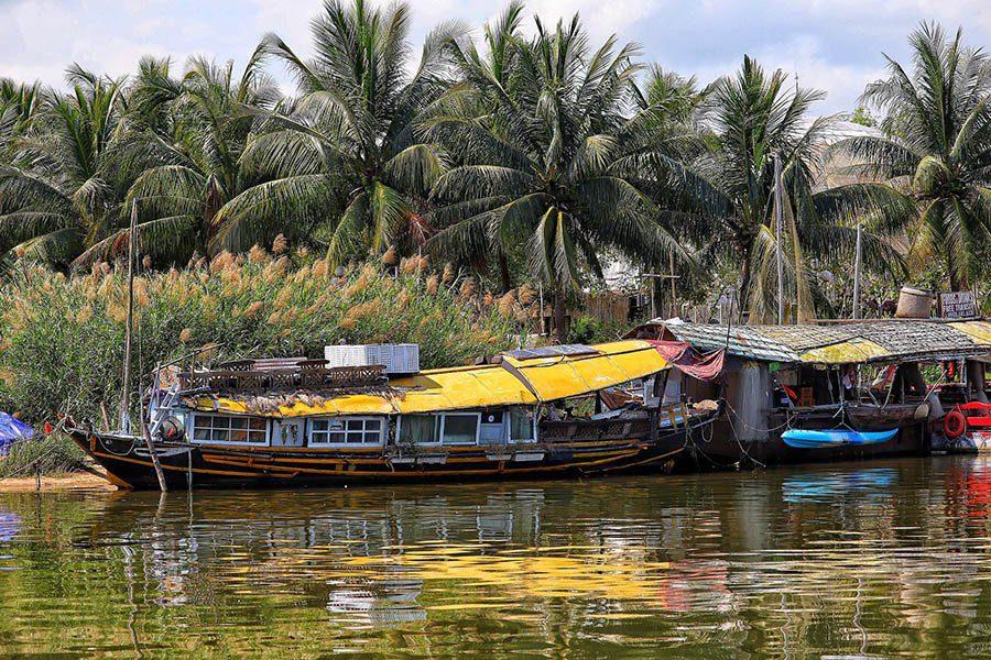 Paysage luxuriant du delta du Mékong, Vietnam